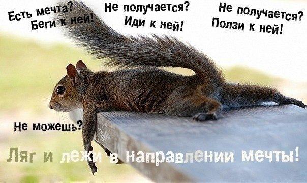 http://data26.gallery.ru/albums/gallery/207384-7a30a-90544546--ufb572.jpg