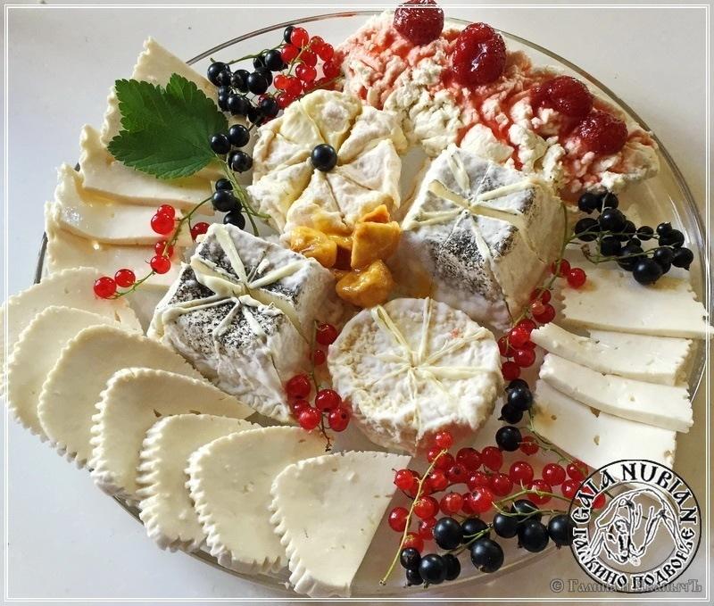 Рикотта ... сыр из сыворотки (молоко англо-нубийских коз)