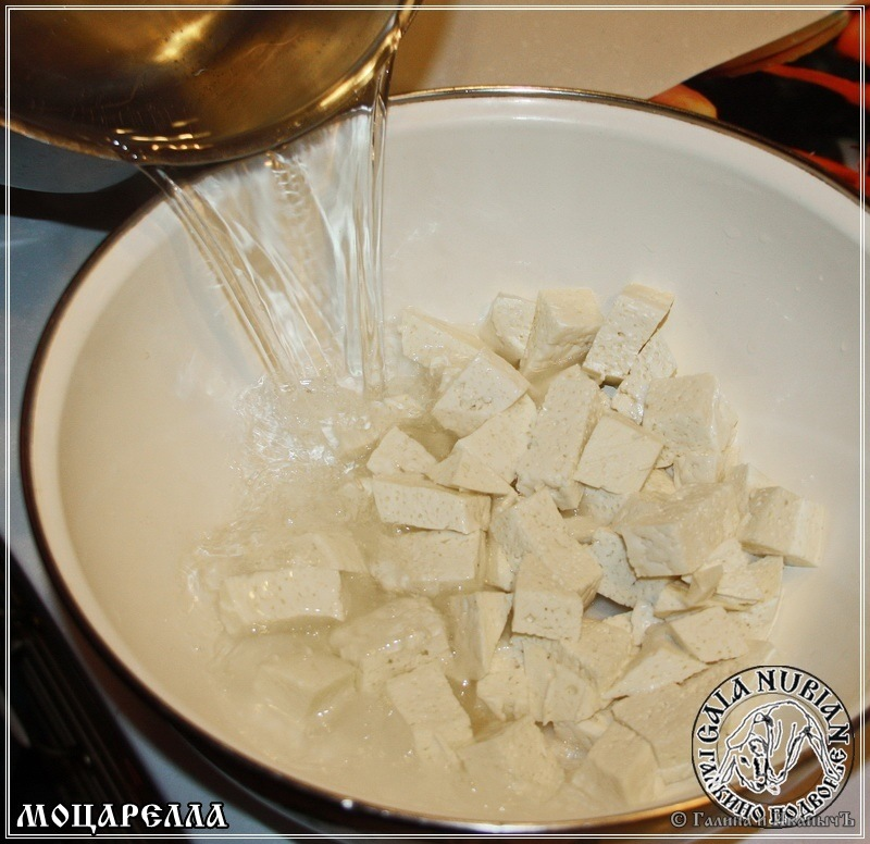 Моцарелла из молока англо-нубийских коз