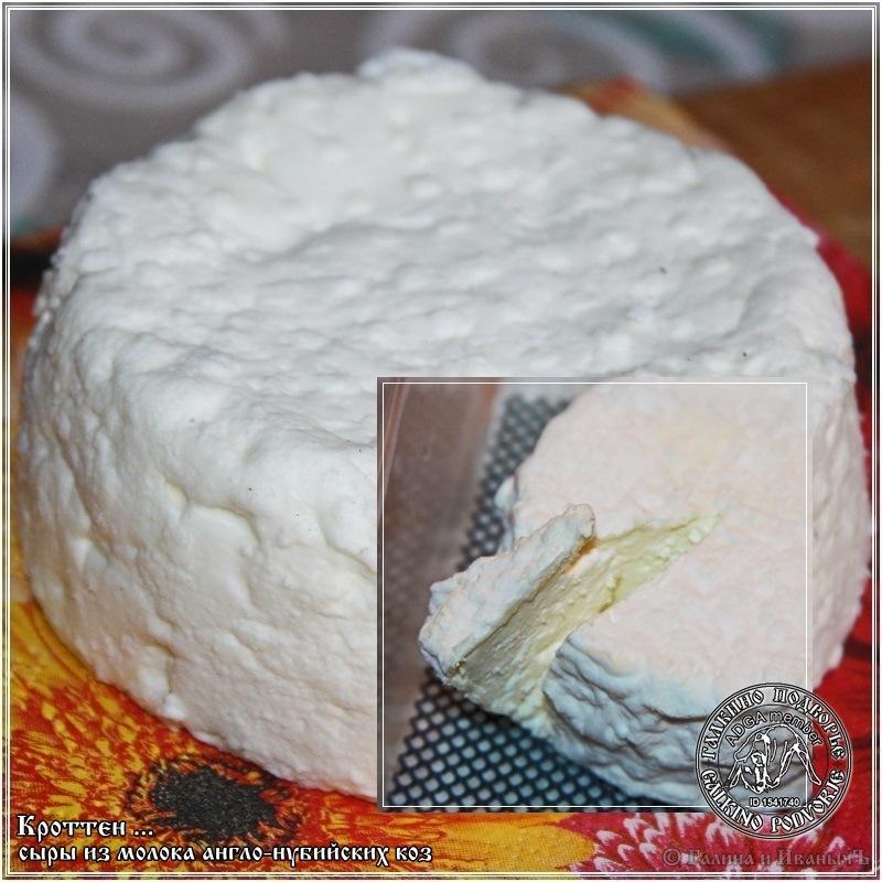 Сыр Кроттен из молока англо-нубийских коз